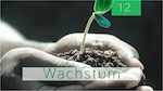 12.Bibelstudienmaterial - Wachstum