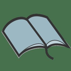 Bible Icon 300 -