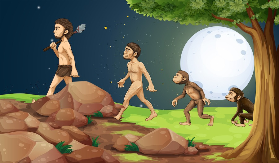 Evolutionstheroie